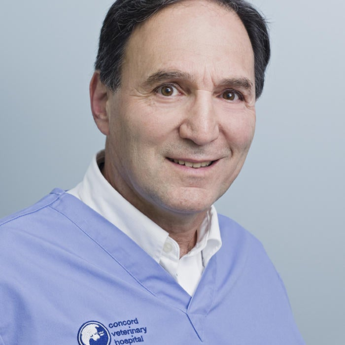 Dr. Alan Gassel, </br> DVM & Founder  photo